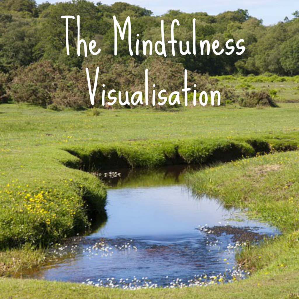 Mindfulness Visualisation