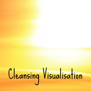 Cleansing Visualisation Image